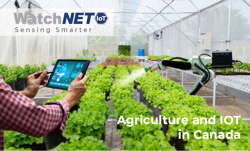 Agriculture and IoT in Canada